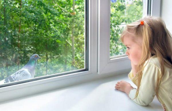 Безопасные ли металлопластиковые окна для здоровья?