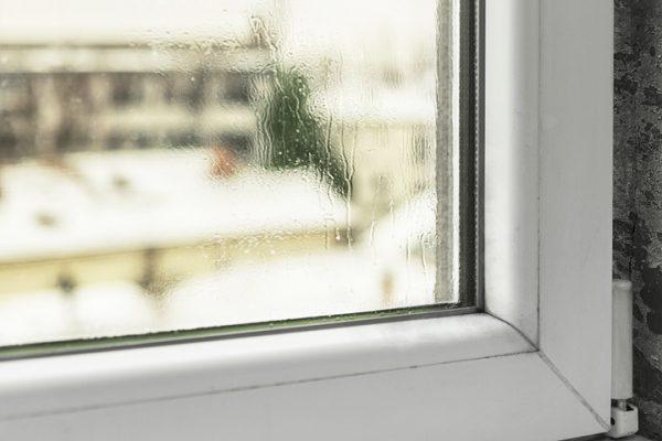 окна при влажности