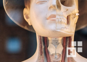 анатомия окна часть 1